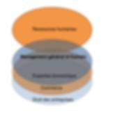 schéma action dirigeant de nipsko evolution