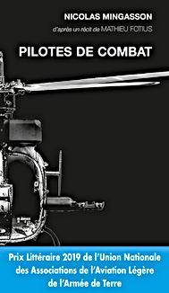 Pilot combat.jpg
