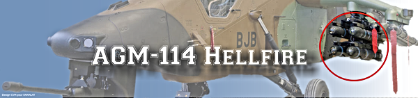 AGM114 Hellfire sur TIgre