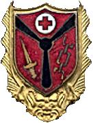 Insigne-GH2.