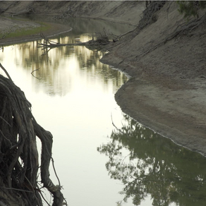 The River and the Filmmaker: A Journey towards a Meeting Place