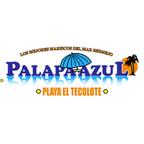 Logo Palapa Azul.png