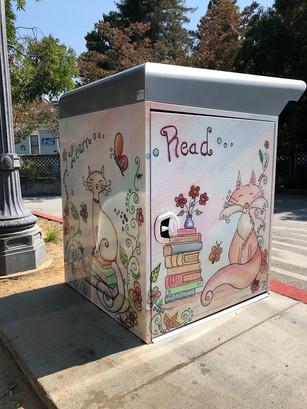 Library Drop Box