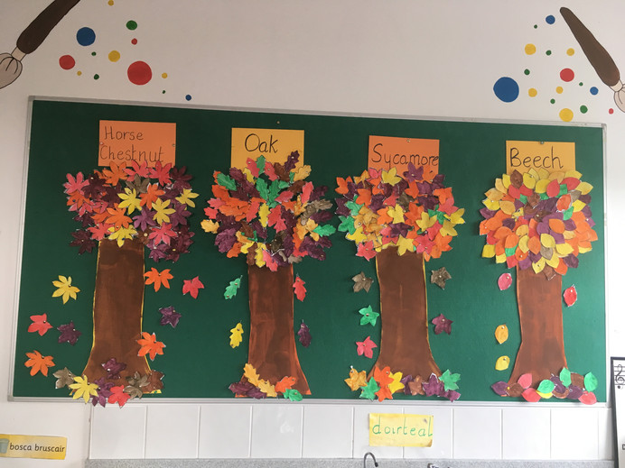 1st & 2nd classes looking forward to Autumn