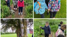 Junior and Senior Infants tour to Turlough House