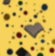derrywash (72)_yellow.jpg