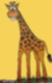 derrywash (33)_yellow.jpg