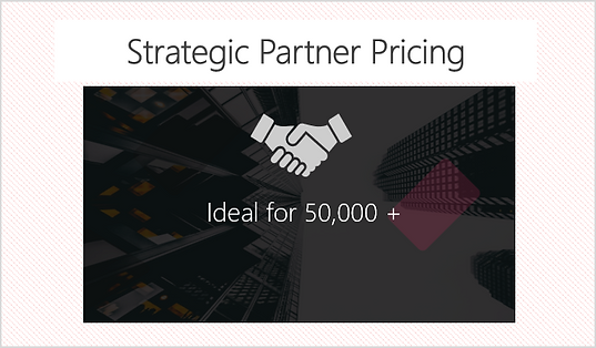 strategic partner.png