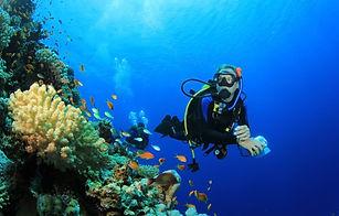 padi-advanced-open-water-diver 2.jpg