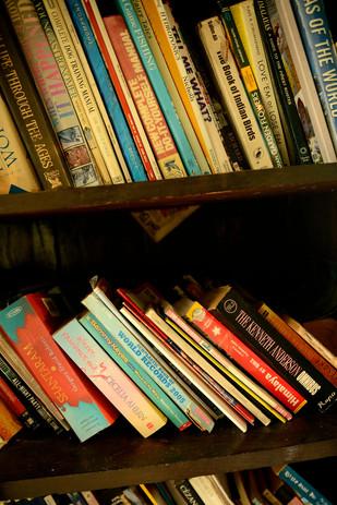 The Mini Library