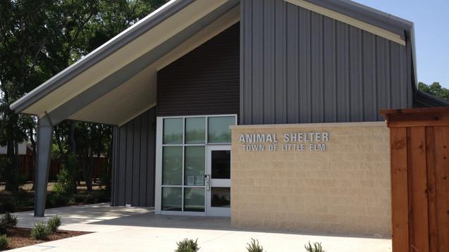 Little Elm Animal Shelter