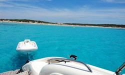 boat-rentals-palma-illes-balears-sunseeker-predator-58-open-processed (3)