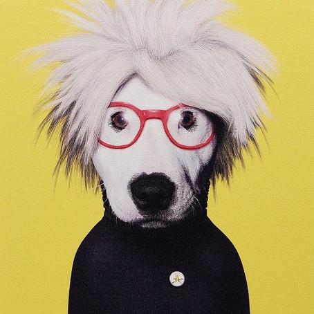 """Conceptul de """"câine"""" latră"""