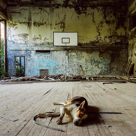 Câte un Cernobîl pe zi