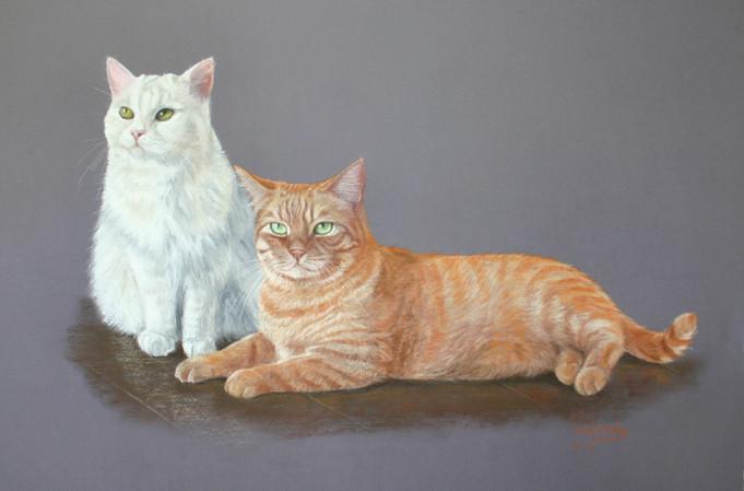 McDowell cats.jpg