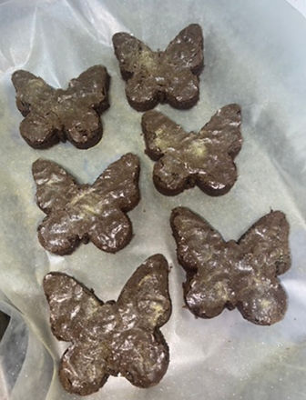butterfly brownies.jpg