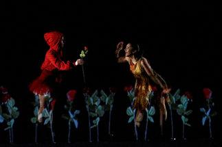 Spectacle _Quoi tu danses_