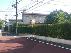 連続する生垣/Connecting hedges