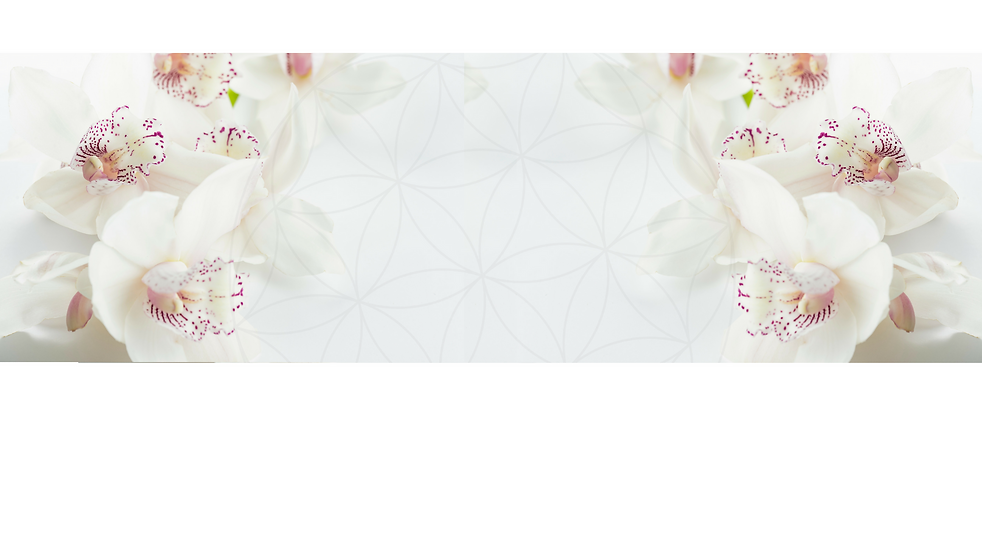 שער הסחלבים הלבנים (3).png