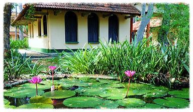 yoga retreat auroville, einat freedom yoga, yoga retreat auroville india 2014