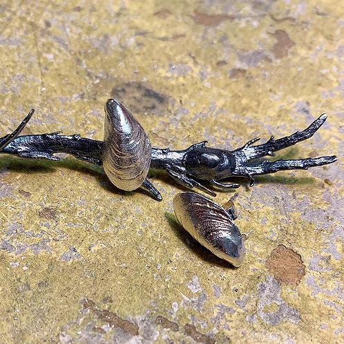 Mussel Earring - Silver 925