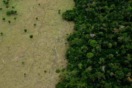 ¿Qué es lo que pasa con la sostenibilidad?