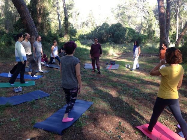 Yoga en el bosque