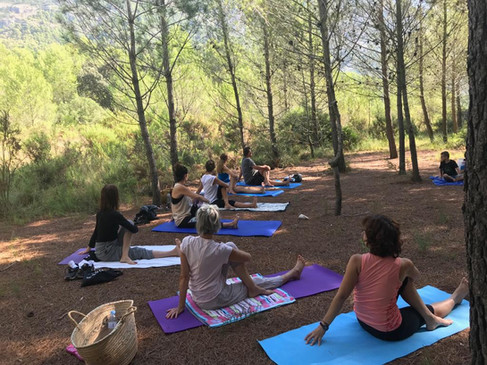 Yoga en el bosque 2019