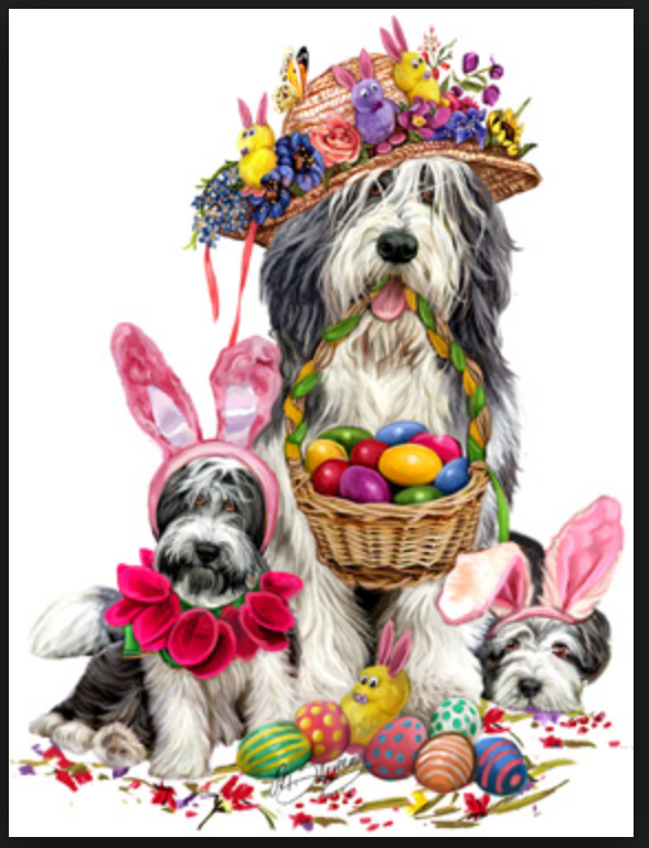 Easter Bearded Collies with Easter Bonnet and eggs