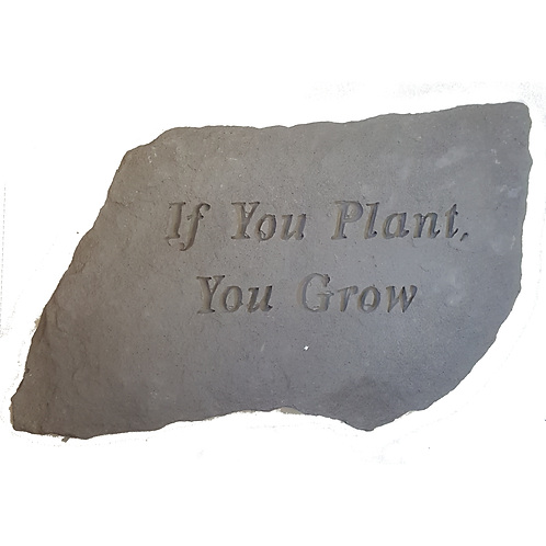 PLAQUE/STEP STONE IF YOU PLANT YOU GROW