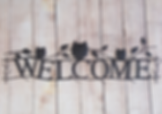 storemainwelcomeowls.png