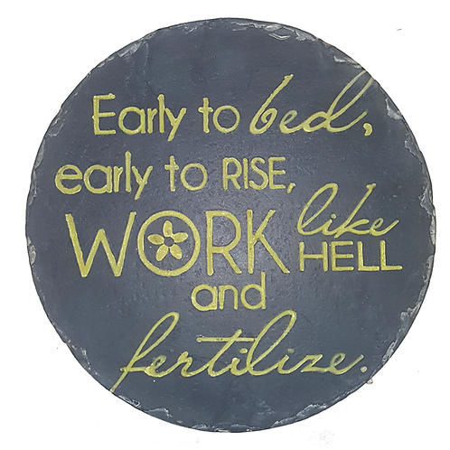 GIFT CRAFT PLAQUE/STEP STONE EARLY TO BED EARLY TO RISE