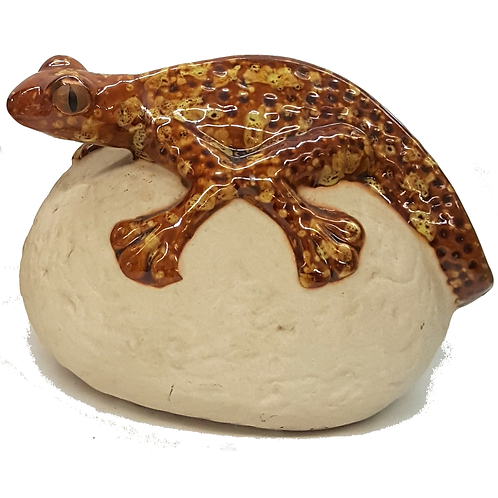 THE POTTING SHED GECKO ON ROCK (GOLD&BROWN)