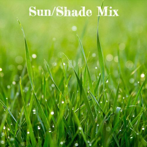 SUN/SHADE MIX GRASS SEED