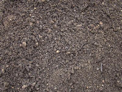 Topsoil / Compost - Westland - 1/2 Yard