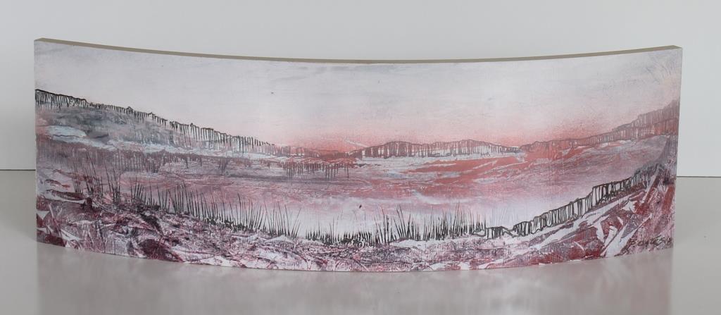 Landscape Tapestries, Convex Side.jpg