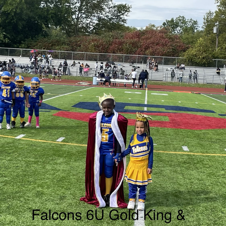 Congratulations to our Southfield Falcons Homecoming court 2021