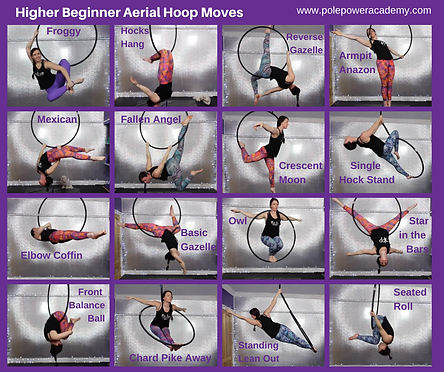 HIGHER BEGINNER HOOP.png