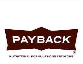 Payback-logo.jpg