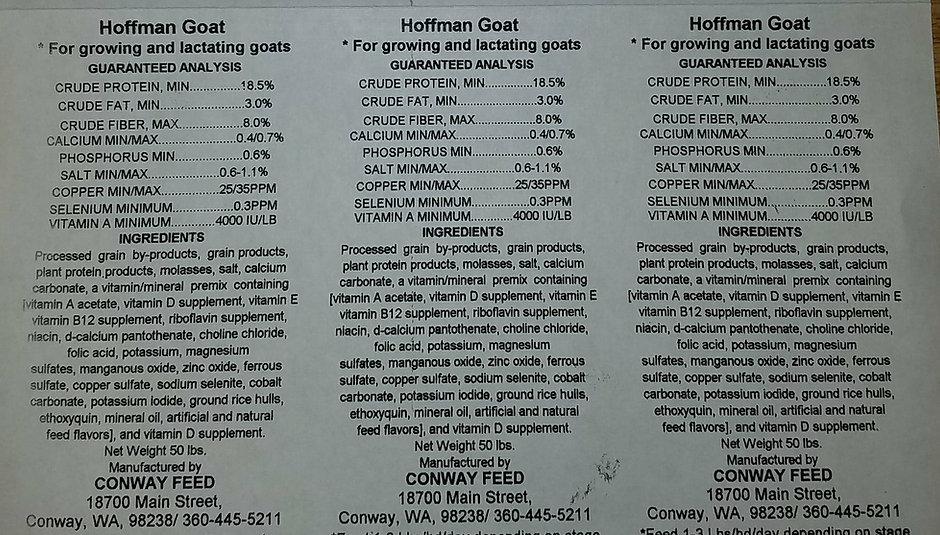 Hoffman.jpg