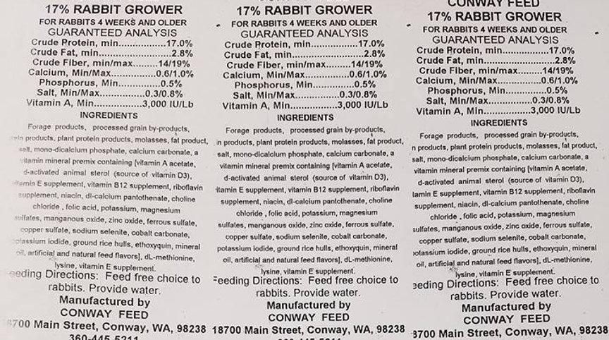 17%Rabbit.jpg