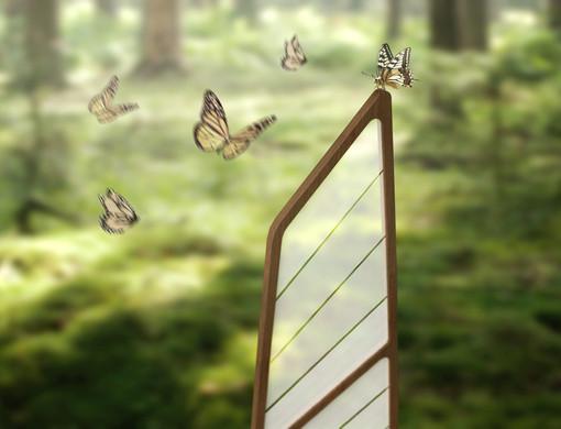Aleta papillon.jpg