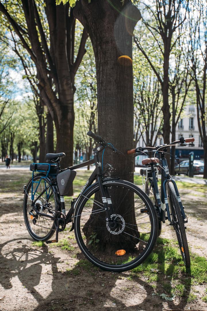 Wayscral Electric Bikes