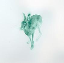 Sylvestre, Lièvre IV, 2016, aquarelle sur papier, 77 x 61 cm  © photographe Suzane Nagy