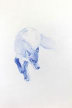 Hunting sketches, Renard, 2018 aquarelle sur papier, 24 x 30 cm © Ruth Gurvich