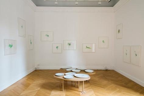 Exposition Sylvestre, 2016, Maison de l'Amérique Latine, Paris  © photographe Jerôme Galland