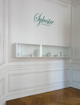 Exposition Sylvestre, 2016, Maison de l'Amérique Latine, Paris  © photographe Jerôme Galland