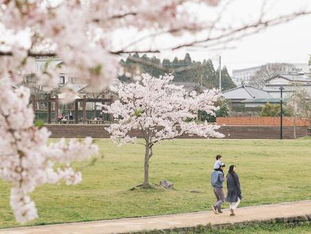 本の紹介 大月敏雄『町を住みこなすー超高齢社会の居場所づくり』