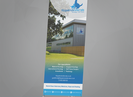 Product Feature: Tension Banners