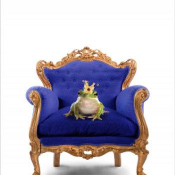 El teu príncep blau (David Safier)